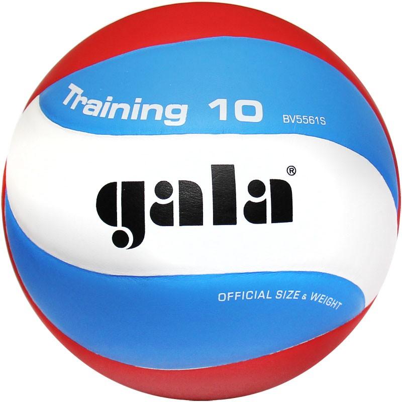 Волейбольный мяч Gala Training 10 размер 5